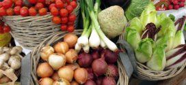 kalendar povrtarstva povrće zeolit organska proizvodnja kalendar radova razvojna agencija vlažna trulež podsticaji sertifikati