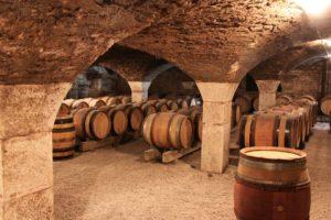 plesnivi miris vino prvi pretok pretakanje vina sumporvodonik vinski podrum