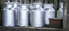 mlekarska industrija holandska farma surutka uzorkovanje higijena mleka