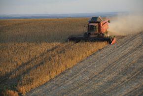 soja gubici žetva soje svetska proizvodnja kombajn zimi