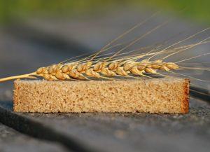 đubriva prema vrsti cena hlebnog kvalitet zrna