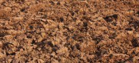 pseudoglej analiza zemljišta ph vrednost gliste vpomažu zemljište glistenjak nematode supstrati smeše plodnost kalcifikacija kiselost dezinfekcija osoke plodnost zemljišta
