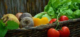 trgovina na klik cink organsko rokovi sadnje biopesticidi folijarna prihrana organska djubriva povrtarstvo biofungicidi konkurs za sufinansiranje organska djubriva