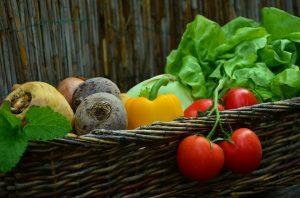 cink organsko rokovi sadnje biopesticidi folijarna prihrana organska djubriva povrtarstvo biofungicidi konkurs za sufinansiranje organska djubriva