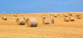 biomasa ušteda slama za gradnju energija biomase