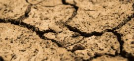 humizacija promena klime