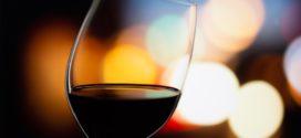 novosadski salon festival srpskih prokupac vinarija kovačević vino je kvalitet kalemova