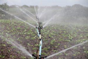 Konkurs vodosnabdevanje plodored navodnjavanje sistem za navodnjavanje korenov sistem sistemi za navodnjavanje