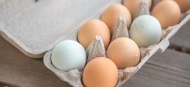 kvalitet jaja manjak minerala
