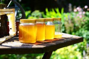 pčelari med pravi sajam pčelarstva med svaki dan sajam meda
