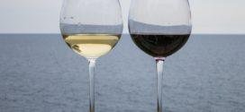 sortna vina beli prelom