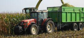 kukuruz za silažu siliranje kukuruza nove tehnologije inokulanti ta dve kulture