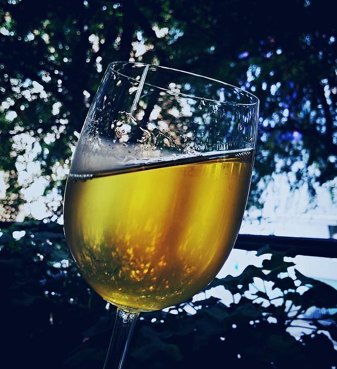 ravangrad sombor bistrenje vina berba sremski
