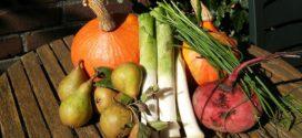organsko seme integralna proizvodnja vertikalna farma organski proizvodi