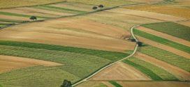 savremena poljoprivreda zakup državnog zemljišta obećanja ministra novac za integrisani sistemi zemljište našoj država je gazdinstva u srbiji postrna setva registracija gazdinstava