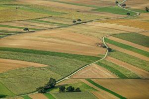 zakup državnog zemljišta obećanja ministra novac za integrisani sistemi zemljište našoj država je gazdinstva u srbiji postrna setva registracija gazdinstava