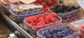jagode maline pakovanje plodova