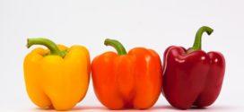 dani povrća dani krsturske dan povrtarstva