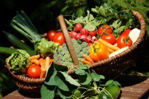 internet pijaca marketing u poljoprivredi austrija zemlja
