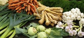 savetovanje povrtara jantarna kiselina