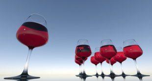 vinski plato festival vina
