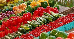 krediti sa marketing u poljoprivredi berba povrća zadrugarstvo