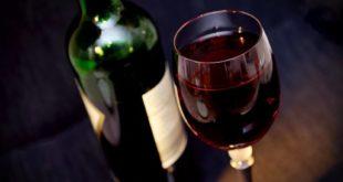 dionis probus najbolja vina